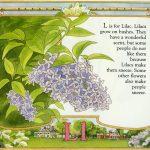 lilac art by Leslie Evans Illustration