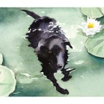 Morgan swimming watercolor by Leslie Evans Illustration