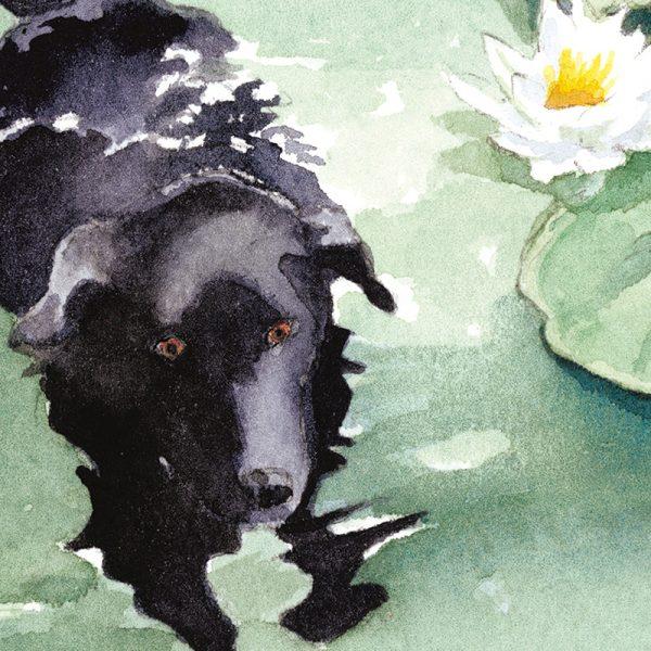 Custom Print Work in Watertown, MA - Morgan Swimming Watercolor by Leslie Evans